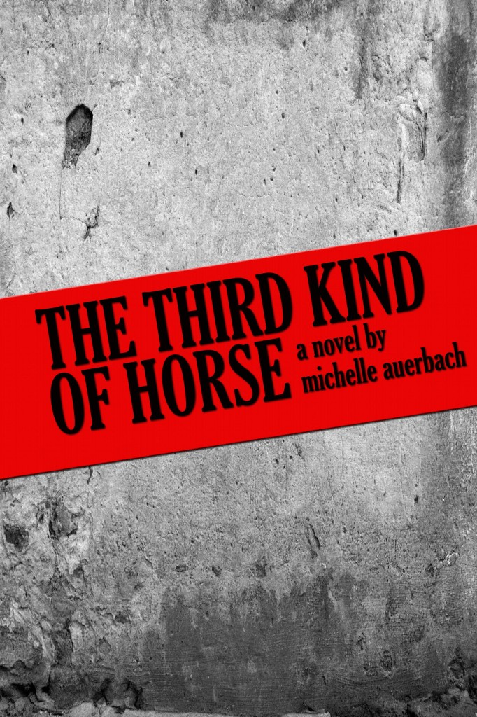 michelle auerbach novel the third kind of horse